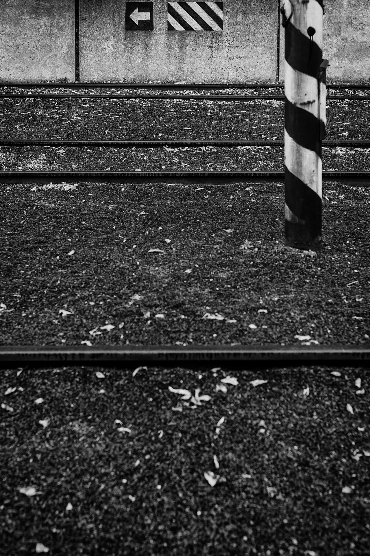 kolajisko / rails